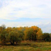 А осень - это просто повод, взять фотик и идти гулять... :: Валентина ツ ღ✿ღ