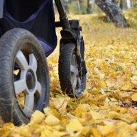 Шорох листвы... :: Марина Шанаурова (Дедова)