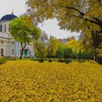 Снова осень :: Виктор