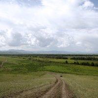 Земляная дорога в гору :: Виктория Большагина