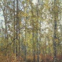 осень :: Геннадий Свистов