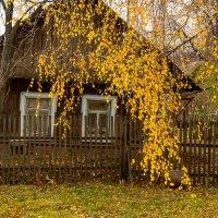 В вечернем свете :: Валерий Симонов