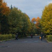 Осень- великолепна  Рыбинск :: Александр Ребров