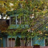 Дом с мезонином! Летом в листве и не видно было. :: Татьяна Помогалова