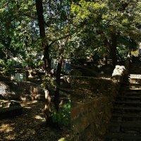 Лестница на Польском спуске :: Александр Корчемный