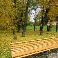 В парке. :: ВАЛЕНТИНА ИВАНОВА