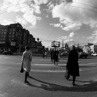 Люди торопятся жить :: Людмила Ильина