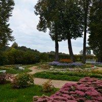 Осень в Тригорском :: Ирина Никифорова