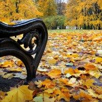 Просто осень... :: Андрей Войцехов