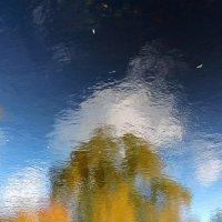 Осень в зазеркалье :: Tatiana Kravchenko