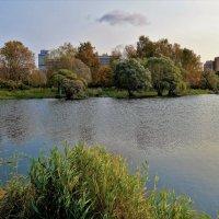 Ветерок над осенним прудом... :: Sergey Gordoff