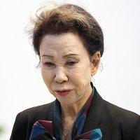 красота женщины из Японии :: Олег Лукьянов