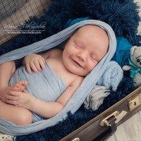 Фотосессия новорожденный :: Марина Белогрудова