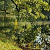 Утренняя прогулочка по островкам парка :: Владимир Гилясев