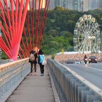 На мосту :: Ирина Бирюкова