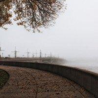 Туман :: Игорь Свет