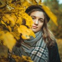 Осенний :: Илья Земитс