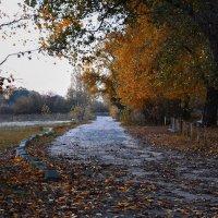 осень :: Сергей К.