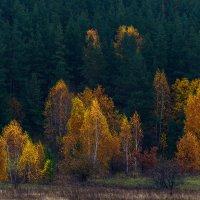 Осень пришла... :: Влад Никишин