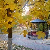 Осень... :: Serg