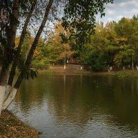 В осеннем парке тишина :: Наталья Кузнецова