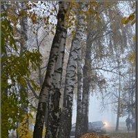 ОСЕНЬ. ТУМАННЫЕ ИСТОРИИ. :: Юрий Ефимов