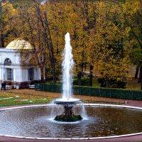 Красота Осени. :: Марина Харченкова