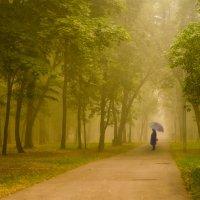Гулять по лесу :: Ксения Исакова