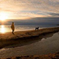 На Финском заливе. :: Ирэна Мазакина