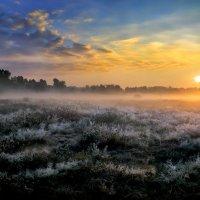 Рассветные волны...5. :: Андрей Войцехов