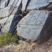петроглиф, Казахстан ЮКО :: Бахытжан