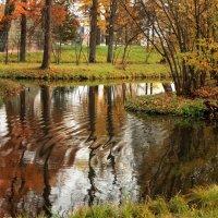 Потревоженное отражение... :: Ирина Румянцева