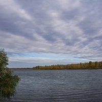 Уж небо осенью дышало. :: Надежда Парфенова