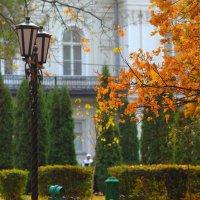 Тишина осени :: Юрий Гайворонский