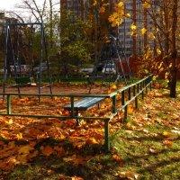 Всё, что осталось от золотой осени :: Андрей Лукьянов