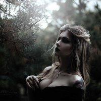 Каролина в стране кошмаров :: Ирина Каткова