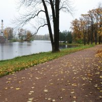 И 9 лет назад была такая же дождливая  осень..)) :: tipchik