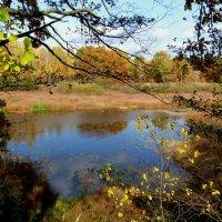 осенняя синева озера :: Александр Прокудин