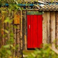 Эта красная дверь :: Александр