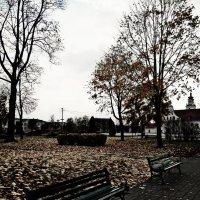 Осень :: Шура Еремеева