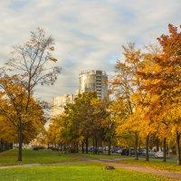 Осень в городе. :: bajguz igor
