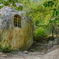 Дом, в котором живут гномы :: Андрей Козлов