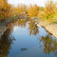 Осень в отражении... :: Тамара (st.tamara)