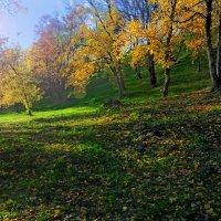 .......вот  и  осень................ :: Георгий Никонов