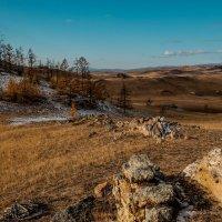 Холмы Тажеранской степи. Байкальский национальный парк. :: Rafael