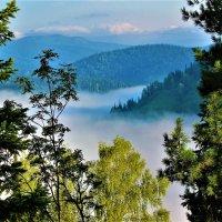 Туман в речной долине :: Сергей Чиняев