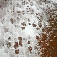 Первый снег... :: leonid kononov