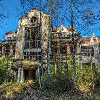 Заброшенный домик в лесу :: Владимир