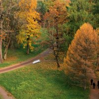 Прощальные краски октября... :: Ирина Румянцева