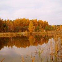 Mano ežeras / My lake :: silvestras gaiziunas gaiziunas